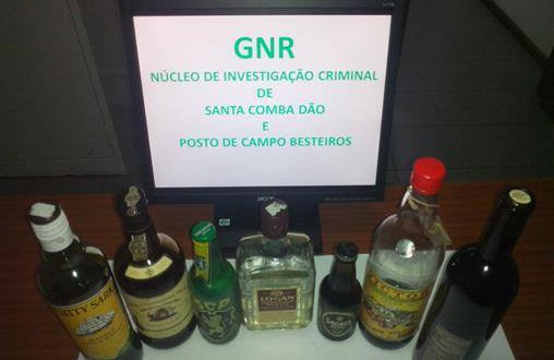 gnr11