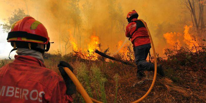 Imagem de: www.ahbvc.org.pt