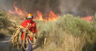 5 meios aéreos combatem incêndios no distrito