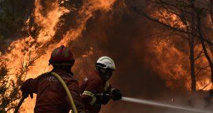 Mais de 100 bombeiros e cinco meios aéreos combatem incêndio em Castro Daire