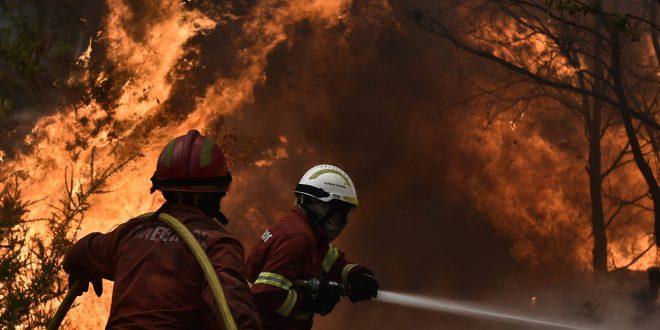 imagem de: www.atlantico.net
