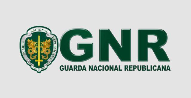 GNR-800x445