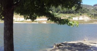 Verdes exigem reposição da Praia Fluvial de Sejães