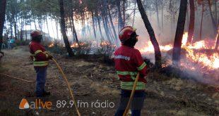 """Incêndios: Autarca de Tondela diz que """"O Governo não pode fugir às responsabilidades"""""""