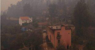 Distrito Viseu: Chamas tiraram a vida a 16 pessoas