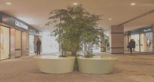 Palácio do Gelo e Forum Viseu encerram maioria das lojas