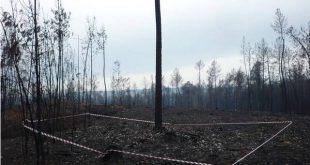 Tondela e o património arqueológico perdido nas áreas ardidas pelos incêndios
