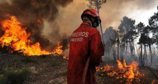 Viseu: Incêndio florestal em Penedono mobiliza 7 meios aéreos