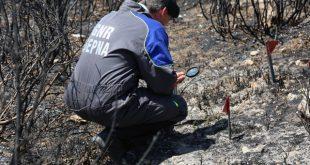 PJ deteve desempregado suspeito de atear um incêndio florestal em Viseu