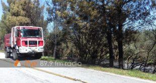 GNR: Seis identificações por incêndio florestal no distrito de Viseu