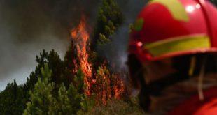 Sete meios aéreos e mais de 200 bombeiros combateram incêndio em Viseu