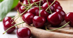 Produção de cereja atrasada três semana