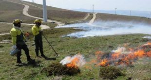 Plano de Fogo Controlado da Serra de Montemuro até 2022