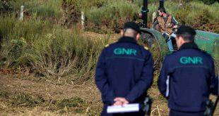 GNR vai fiscalizar incumprimento na limpeza de terrenos, coimas variam entre 280 e 120 mil euros