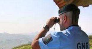 Incêndios: ativado estado de alerta especial de nível vermelho para o distrito de Viseu