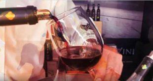Dão lança campanha de apoio à restauração e aos vinhos da região