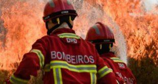 Incêndios: Viseu segundo distrito com maior número de ignições