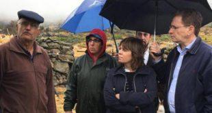 Incêndios 2017: Bloco de Esquerda preocupado com regeneração desordenada dos eucaliptos