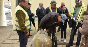 Moimenta da Beira incentiva produtores de abóboras