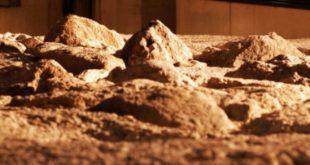 Descoberto troço da muralha romana em Viseu