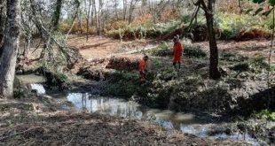 Mangualde: Reabilitação das linhas de água nas áreas afetadas pelo incêndio de 2017