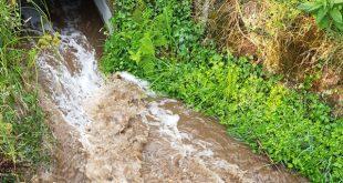 """BE: poluição da ribeira de Dardavaz """"é mais um caso de desleixo das autoridades locais"""""""