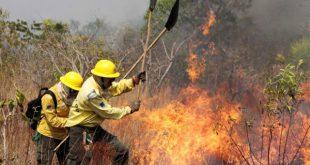 Sátão vai ter uma  brigada para serviço de segurança contra incêndios