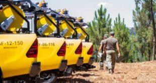Concelho de Viseu com défice de equipas de sapadores florestais