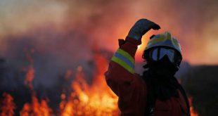 Sátão: um meio aéreo combate incêndio em Ferreira de Aves