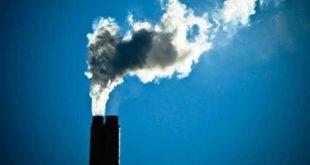 """Sem """"planeta B"""", jovens de Viseu exigem medidas para a crise climática"""