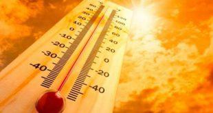 Viseu: onda de calar e noites tropicais aumentam risco de incêndio.