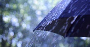 Tempo: chuva forte e trovoada colocam Viseu sob aviso amarelo