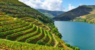 Amigos do Douro alertam para impacto negativo de prospeção mineira