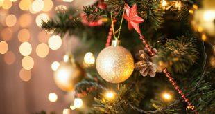 """Sátão: veja as """" Montras de Natal"""" que vão a concurso"""