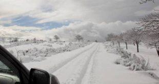 Queda de neve corta estradas no norte do distrito de Viseu