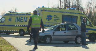Mulher atingida por queda de árvore em Tondela não resistiu aos ferimentos