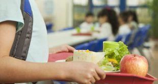 Viseu: câmara aprovou 1,2 milhões de euros para refeições das escolas do concelho