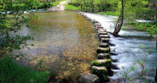 """Duas praias fluviais do distrito de Viseu receberam distinção """"qualidade de ouro"""""""