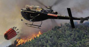 Incêndio: meio aéreo combate chamas em Carregal do Sal