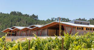 Sátão: Adega da Taboadella lança para o mercado a primeira gama de vinhos