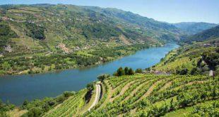 CIM Douro cria passaporte para promover turisticamente diversidade dos 19 concelhos