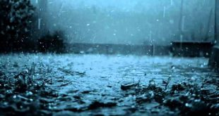 Tempo: Viseu sob aviso amarelo devido à chuva e vento forte