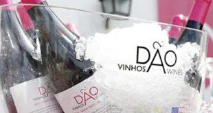 Dão Invicto mostra em Vila Nova de Gaia vinho de 40 produtores