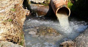 ETARS de Vila Nova de Paiva e Castro Daire na origem da poluição do rio Paiva, denuncia BE