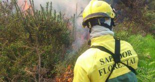 Sapadores florestais de Viseu, com salários em atraso, acusa sindicato