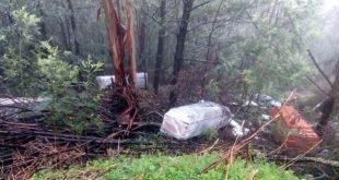 Quatro caixões abandonados numa ravina junto à estrada que liga Boialvo a Mortágua