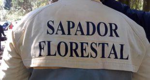 Catarina Martins preocupada com a situação laboral dos Sapadores Florestais
